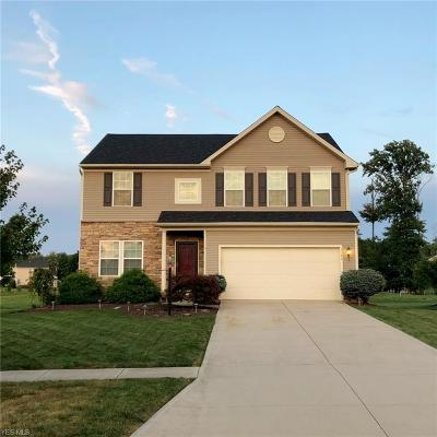 Medina County Single Family Home For Sale: 3143 Seven Bridges Road