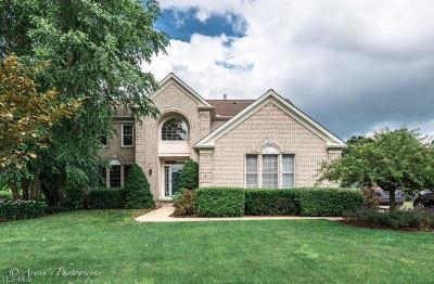 Twinsburg Single Family Home Active Under Contract: 2939 Alling Drive