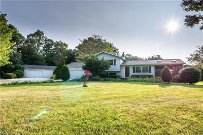 Single Family Home Active Under Contract: 4695 State Route 225