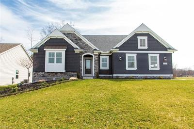 Single Family Home For Sale: 4287 Irondale Drive