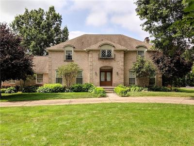 Canfield Single Family Home For Sale: 3935 Fairway Drive