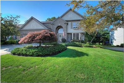 Sagamore Hills Single Family Home For Sale: 442 Adelle Drive