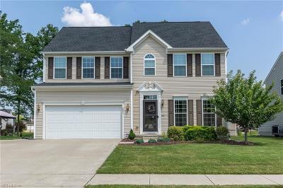 Painesville OH Single Family Home Active Under Contract: $274,900
