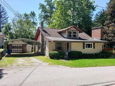 Chippewa Lake Single Family Home For Sale: 139 Heatherhedge Drive