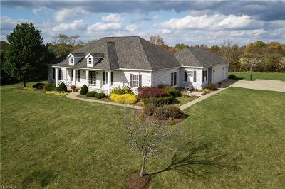 Medina Single Family Home For Sale: 7098 Jenna Court