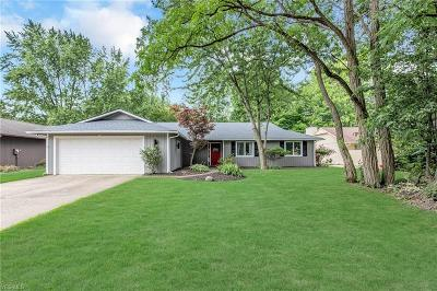 Strongsville Single Family Home For Sale: 9690 Brookstone