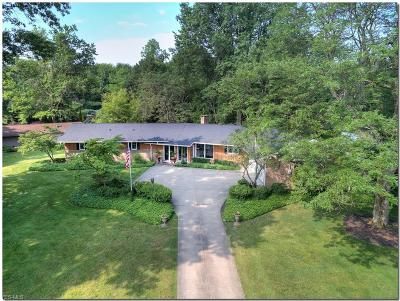 Single Family Home For Sale: 28700 Belcourt Road