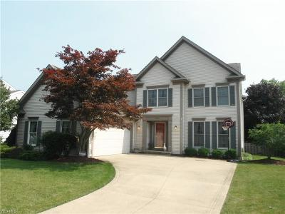 Olmsted Falls Single Family Home For Sale: 24069 West Road