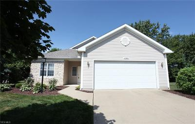 Avon Single Family Home Active Under Contract: 4268 Lake Harbour Way