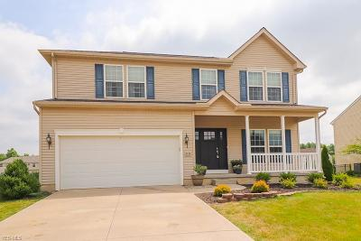 Lorain County Single Family Home For Sale: 8339 Depot Street