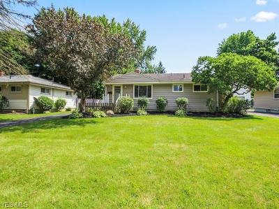 Canfield Single Family Home Active Under Contract: 3415 Flora Lane