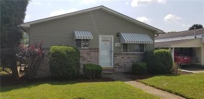 Vienna Single Family Home For Sale: 1412 11th Avenue