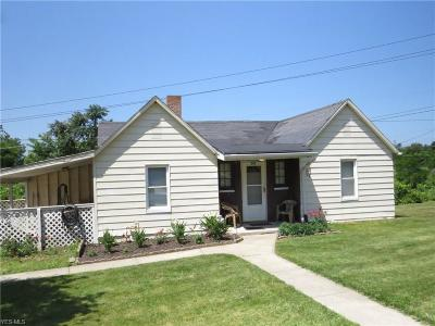 Painesville Single Family Home For Sale: 393 Fairport Nursery Road