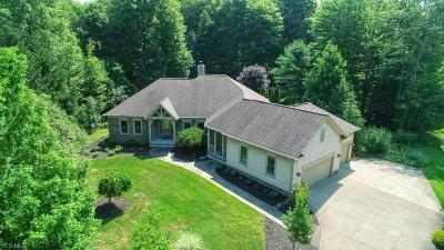 Concord Single Family Home For Sale: 7225 Bridlewood Drive