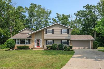 Concord Single Family Home For Sale: 10275 Cherry Hill Drive