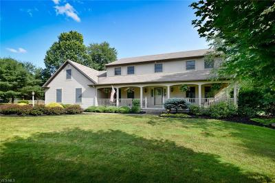 Youngstown Single Family Home For Sale: 2008 Logan Gate Road