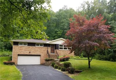 Independence Single Family Home For Sale: 9210 Brookside Road