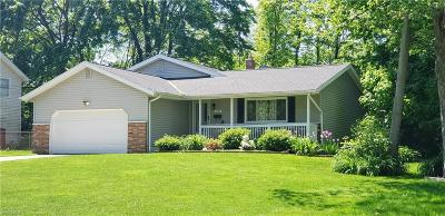 Twinsburg Single Family Home Active Under Contract: 9143 Gettysburg Drive