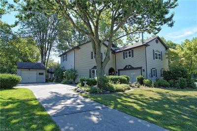 Lorain County Single Family Home For Sale: 3035 Nagel Road