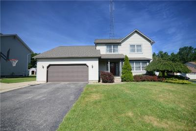 Youngstown Single Family Home For Sale: 3016 Spring Meadow Circle