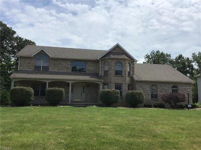 Boardman Single Family Home For Sale: 8563 Reserve Court