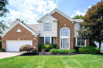 Twinsburg Single Family Home For Sale: 2994 Alling Drive