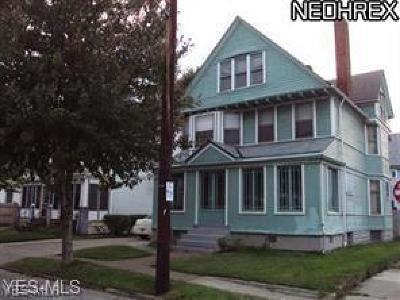 Cleveland Single Family Home For Sale: 1396 E 84th Street