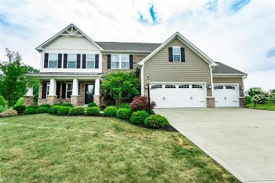 Medina County Single Family Home Active Under Contract: 262 Wellford Way