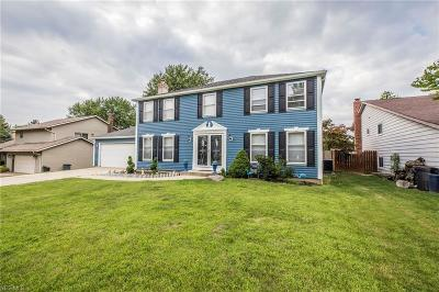 Strongsville Single Family Home For Sale: 17133 Rabbit Run Drive