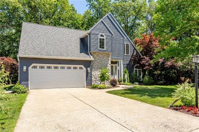 Elyria Single Family Home For Sale: 392 Windward Drive