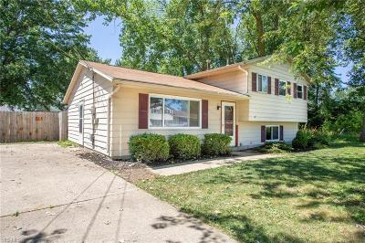 Lorain County Single Family Home Active Under Contract: 946 Roberts Street