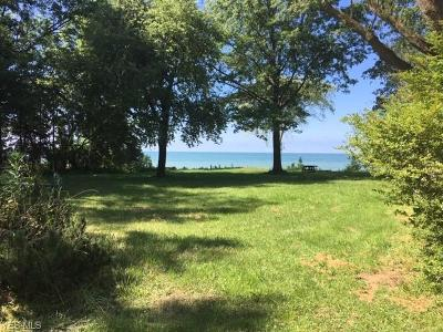 Avon Lake OH Single Family Home For Sale: $649,900