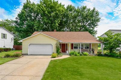Mentor Single Family Home For Sale: 6343 Candlewood Court