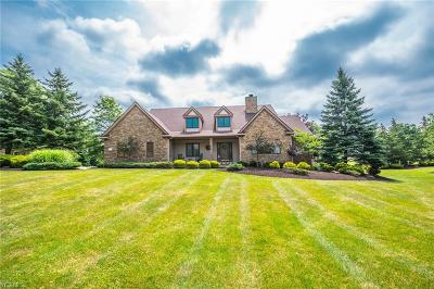 Broadview Heights Single Family Home For Sale: 8135 Thackeray Court