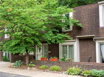 Brecksville Condo/Townhouse For Sale: 6943 W Fitzwater Road #20