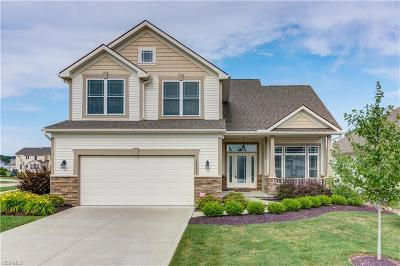 Strongsville Single Family Home For Sale: 22255 North Trail