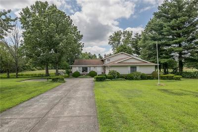 Medina County Single Family Home Active Under Contract: 6490 Myrtle Hill Road