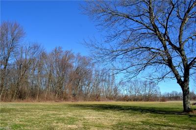 Stark County Residential Lots & Land For Sale: V/L 38th Street