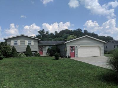 Zanesville Single Family Home For Sale: 2820 Faye Drive