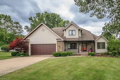 Concord Single Family Home For Sale: 8060 Carriage Hills Drive