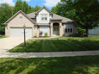 Strongsville Single Family Home For Sale: 9639 Nicole Circle