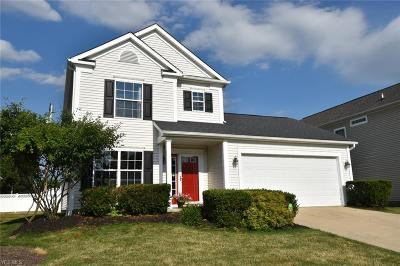 Twinsburg Single Family Home Active Under Contract: 8993 Merryvale Drive