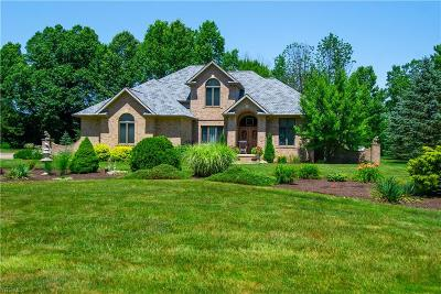 Canfield Single Family Home For Sale: 6950 Steeplechase Drive