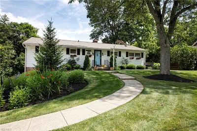 Chagrin Falls Single Family Home For Sale: 338 N Cleveland Street
