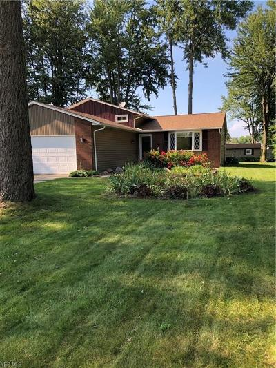 North Ridgeville Single Family Home For Sale: 33890 Gail Drive