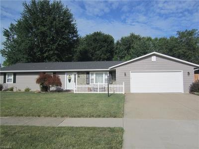 Elyria Single Family Home Active Under Contract: 114 Naples Drive