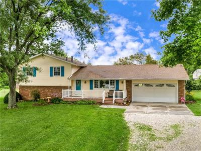 Medina County Single Family Home For Sale: 2603 Blake Road
