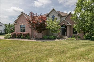 Medina County Single Family Home For Sale: 6226 Highland Meadows Drive