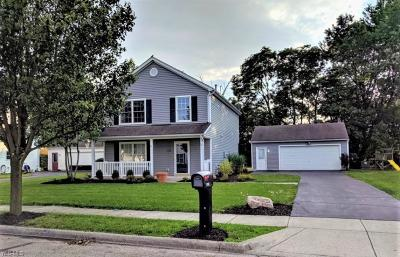 Licking County Single Family Home For Sale: 1126 Lake Forest Drive