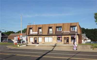 Stark County Commercial For Sale: 13061 Cleveland Avenue